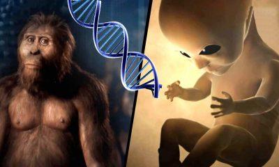 Alienígenas crearon genéticamente al Homo Sapiens hace cientos de miles de años (VÍDEO)