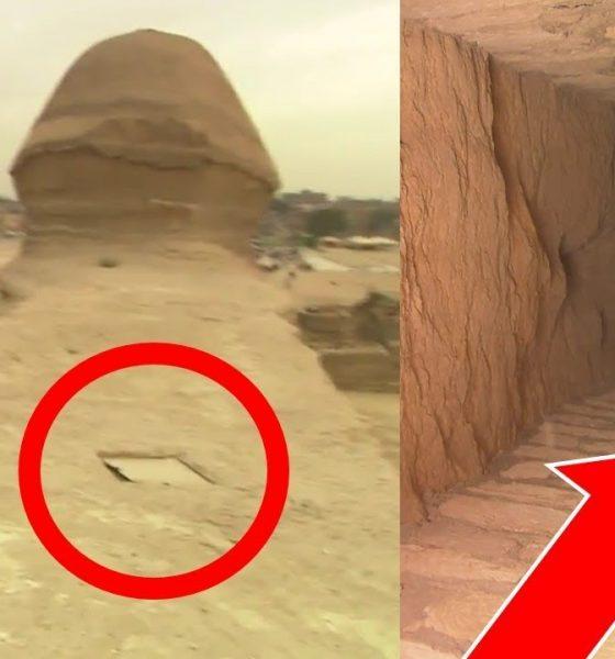 """Entradas secretas en la Esfinge que conducen a un """"mundo subterráneo"""" son reveladas"""