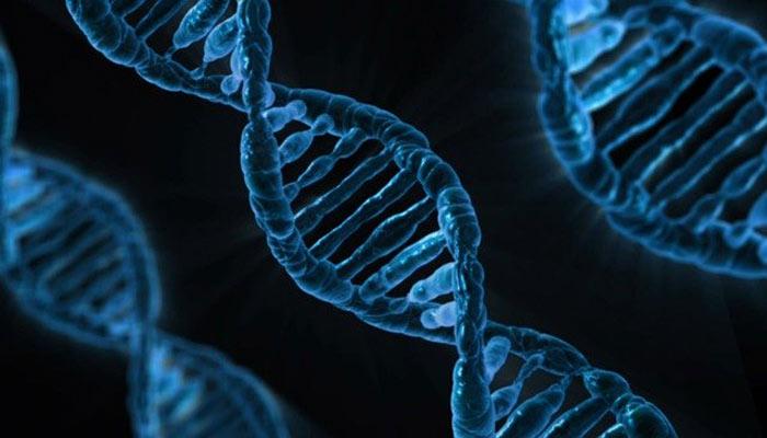 Alienígenas habrían codificado mensajes en nuestro ADN