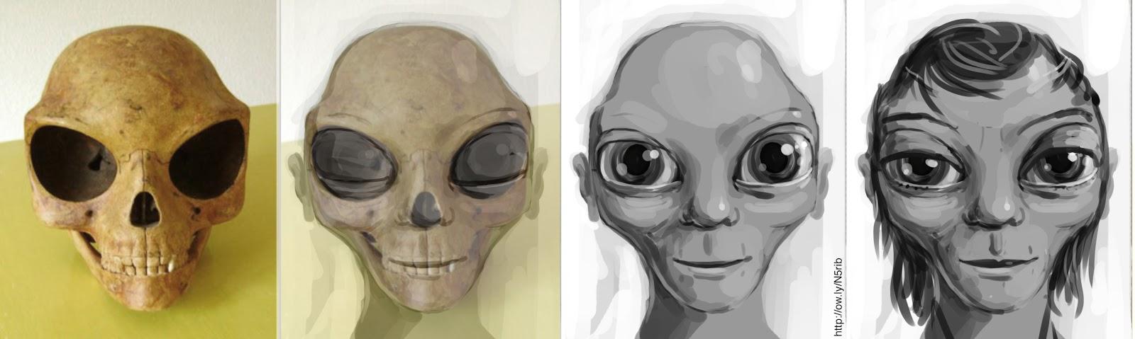 El Misterio de la Calavera «Alienígena» de Sealand