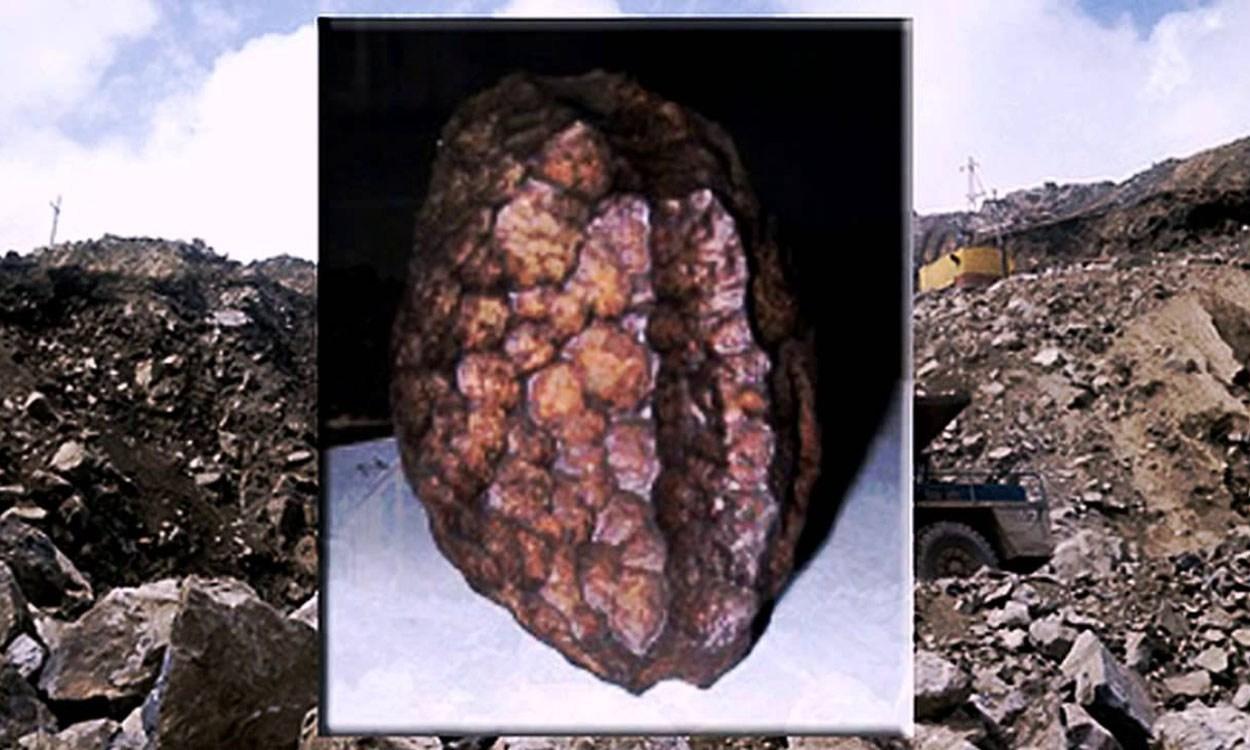 Hierro de Wolfsegg: ¿artefacto creado por el hombre hace 60 millones de años?