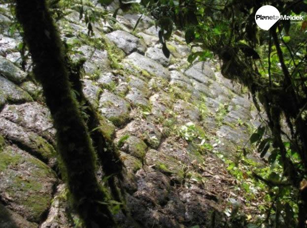 La Ciudad Perdida de los Gigantes en la selva de Ecuador