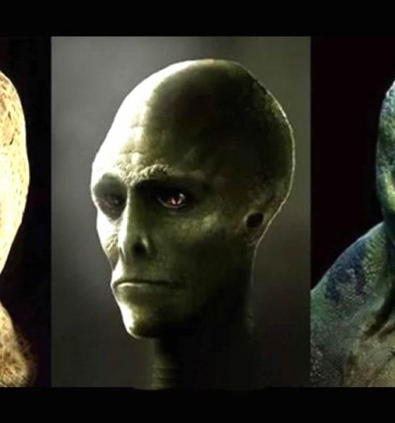 Reptilianos: Conexión Ancestral de la Serpiente de los mitos antiguos a la ciencia moderna