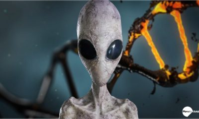 Revelado: mensajes extraterrestres ocultos en el ADN humano