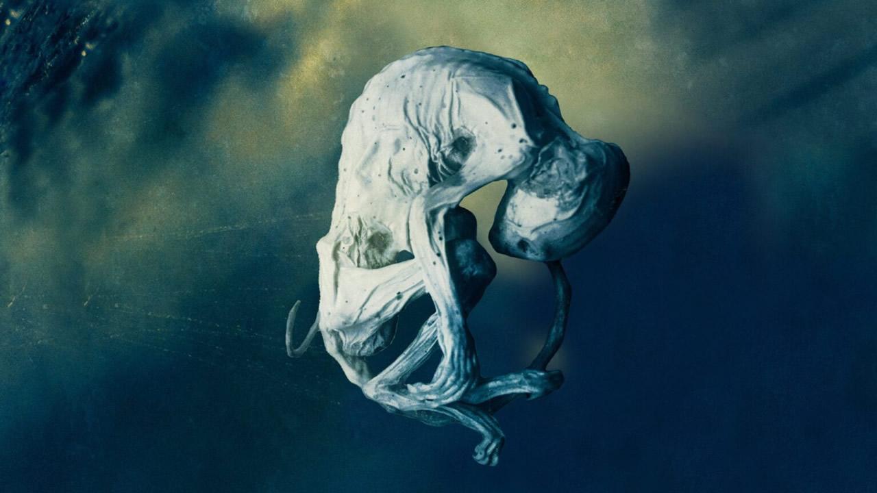 Científico afirmó que EE. UU. posee restos de OVNIs y cuerpos de alienígenas