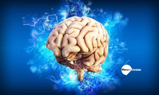 Experimentos de control cerebral