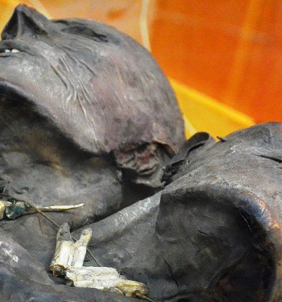 El Gigante de Patagonia de dos cabezas y 3.5 metros que desconcierta a los investigadores