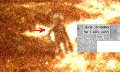 Oficial de Policía británico tomó la fotografía más confiable de un alienígena en 1987
