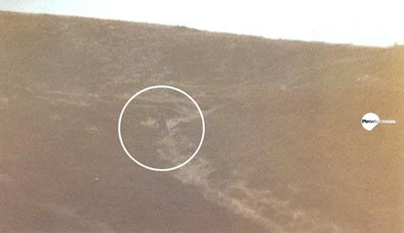 Fotografía del supuesto alienígena tomada por Philip Spencer