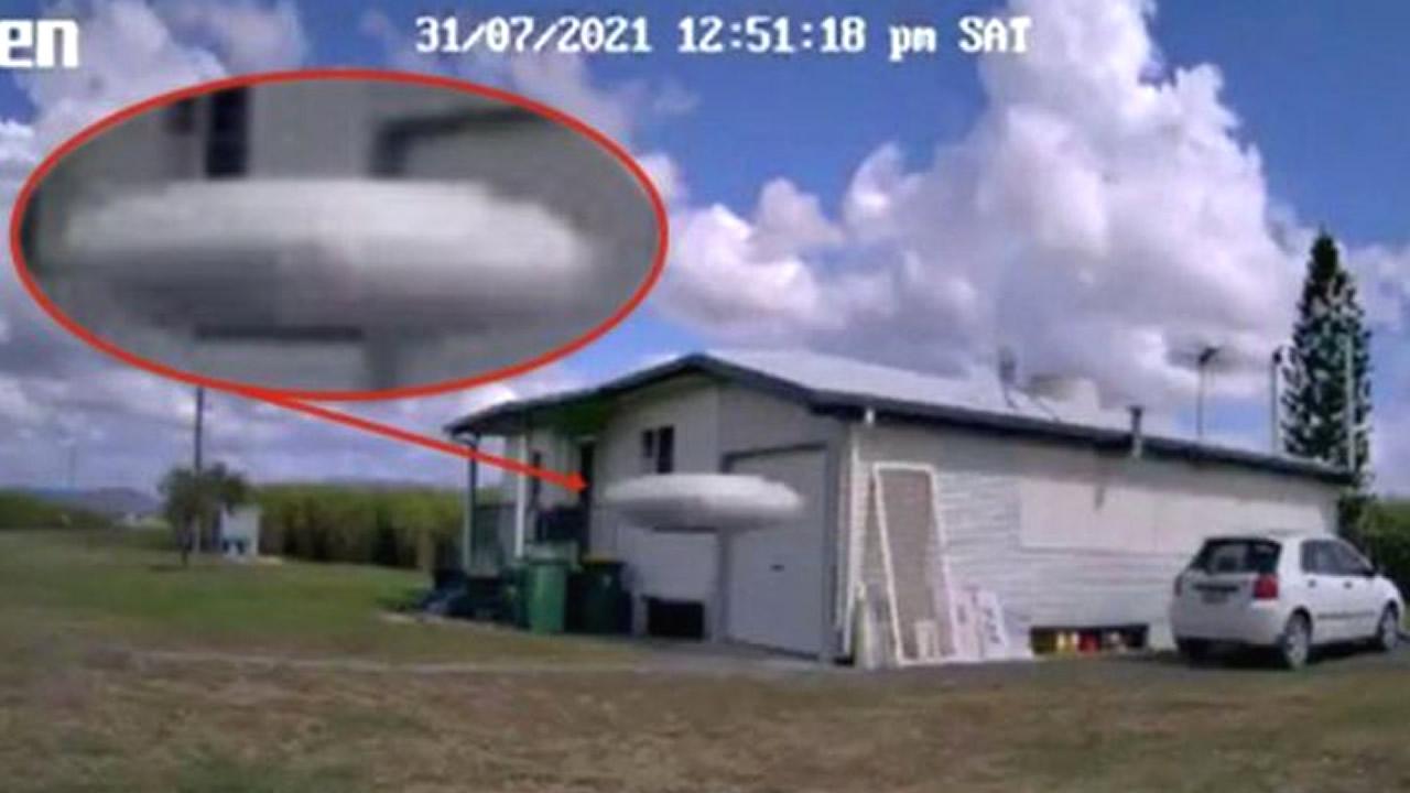 """OVNI """"Fastwalker"""" fue captado por cámara activada por movimiento"""