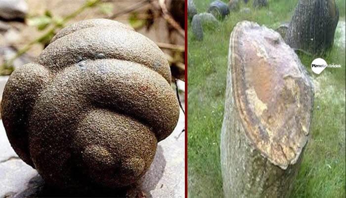 Trovants, las piedras vivas