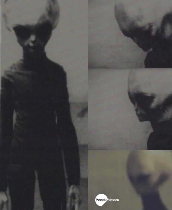 """Captura de un supuesto alien gris """"Skinny Bob"""""""