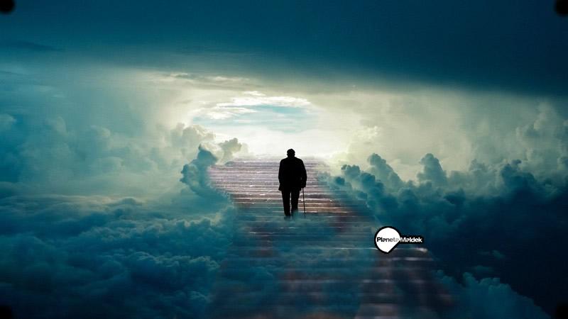 ¿La conciencia persiste a la muerte?