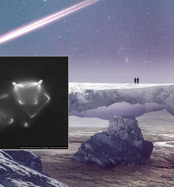 Evidencia alienígena: la primera imagen de un organismo extraterrestre vivo
