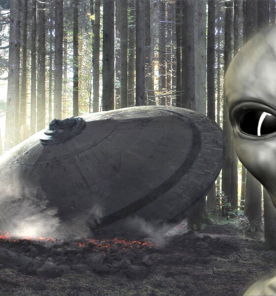 Correspondencia de la CIA revela que accidente OVNI en 1962 mató a dos extraterrestres, afirma detective