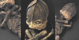 El Enigma del Ser de Kyshtym. ¿Qué era esta extraña criatura?